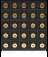 25 Gram 2021 Gold MapleGram Sheet (25 X 1g)