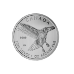 1 oz Silver Red Tail Hawk (SML)-57