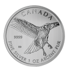 1 oz Silver Red Tail Hawk (SML)-60