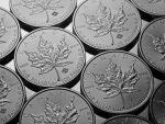 1 oz Palladium Maple Leaf-337
