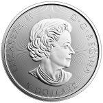 2017 Canada 150 Silver Voyageur-404
