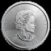 2020 Canadian Polar Bear 1/2 oz Silver Coin
