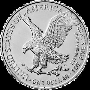 1 oz Silver Eagle Coin Type 2